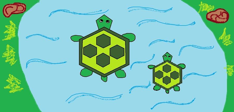 DÚ - želvy