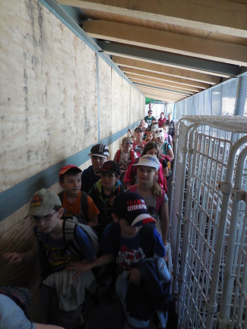 Provizorní vstup do Punkevní jeskyně
