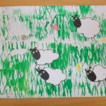 Ovce na louce 007