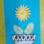 chryzantémy 004