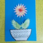 chryzantémy 012