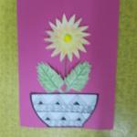 chryzantémy 019