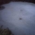 Ondráčková_A_6901_zamrzle-zahradni-jezirko (1)