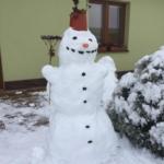 Pulkertová_S_6901_IMG-20210131-WA0006 (3)